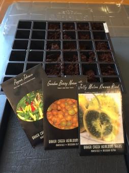 garden-seeds